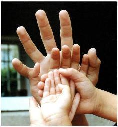mains_famille_2.jpg